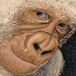 Illustration du profil de vinzo